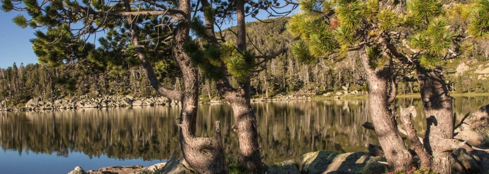 Lac Nègre (c) Isabelle Tarlton