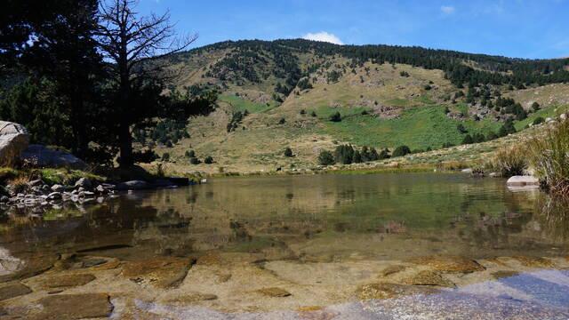 Reserves Naturals Catalanes