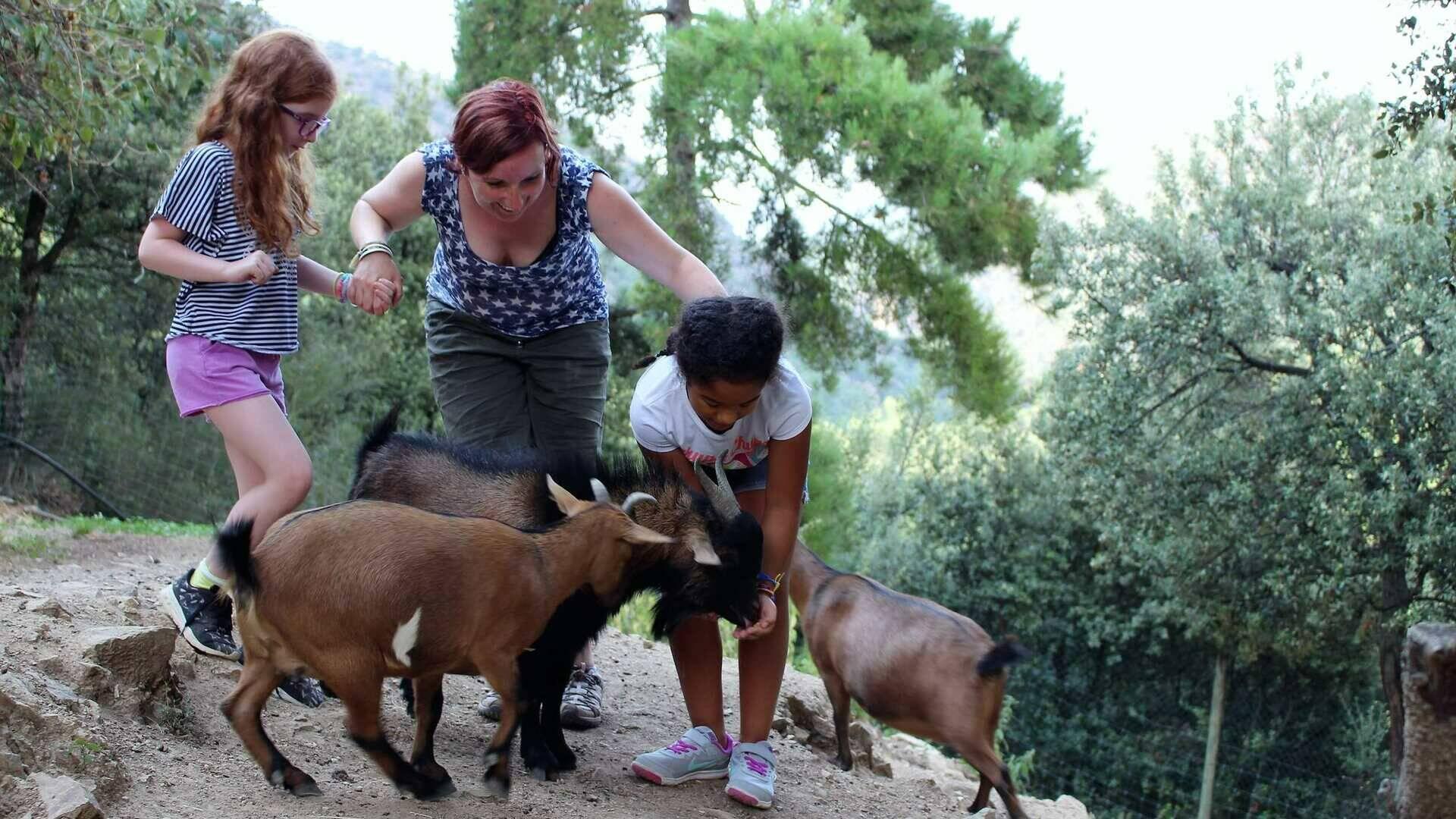 parc animalier de casteil